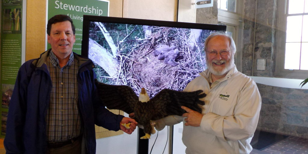 IMGP0897engel with eagle